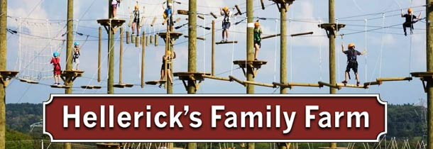 Aerial Adventure Park featuring 9 zip lines, 21 elements/bridges & a free fall jump. Group Rates. Birthday Parties.