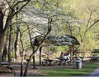 This 230 acre oasis of woods and meadows, in the suburbs of eastern Abington Township, attracts visitors to its natural beauty year-round. Lorimer Park is a haven for wildlife under a canopy of huge trees. Activities include hiking, picnicking, bird and animal watching, horseback riding (with your own horse), and, in the winter, sledding and cross-country skiing. For the angler, Pennypack Creek is stocked with trout by the PA Fish & Boat Commission. Overlooking the creek is majestic Council Rock where, legend says, Native Americans used to meet to plan their activities. It now serves as a beautiful and popular backdrop for wedding photographs.  Adjacent to the facility, 5.75 miles of the former Fox Chase-Newtown rail line has been converted to a recreational trail. This crushed stone path provides level hiking and biking and views of the Pennypack Creek.