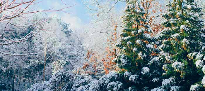 Winter is a wonderful time to enjoy shopping, dining, and the wonderful sights in Lehigh Valley, PA